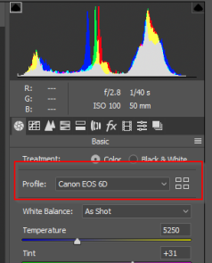 2018-12-22 13_01_02-Camera Raw 11.1 - Canon EOS 6D